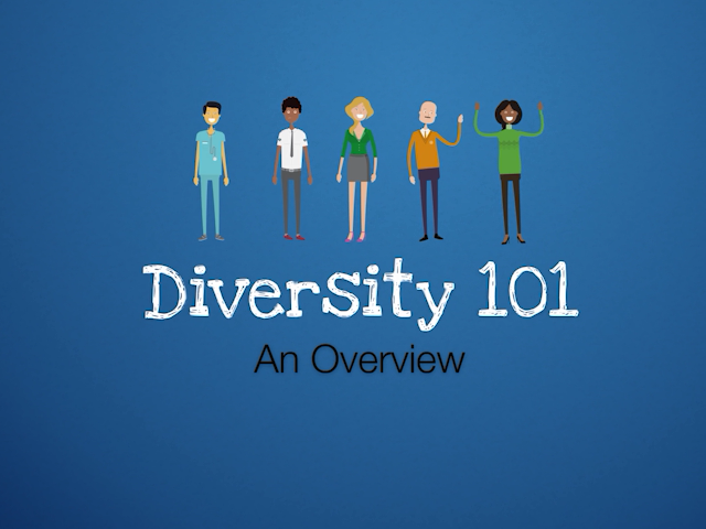 Diversity 101™ - Leveraging the Power of Inclusion, Equity & Respect (DVD, USB & eCourse)
