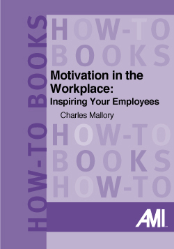 Motivation in the Workplace: Inspiring Your Employees (How-To Book)